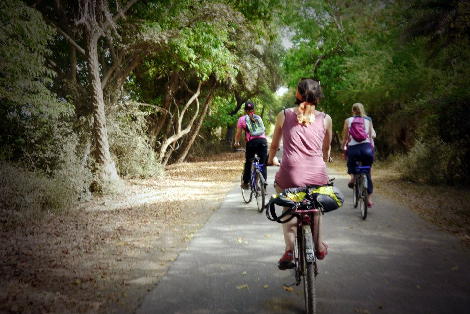 Cycling in Bharatpur, India