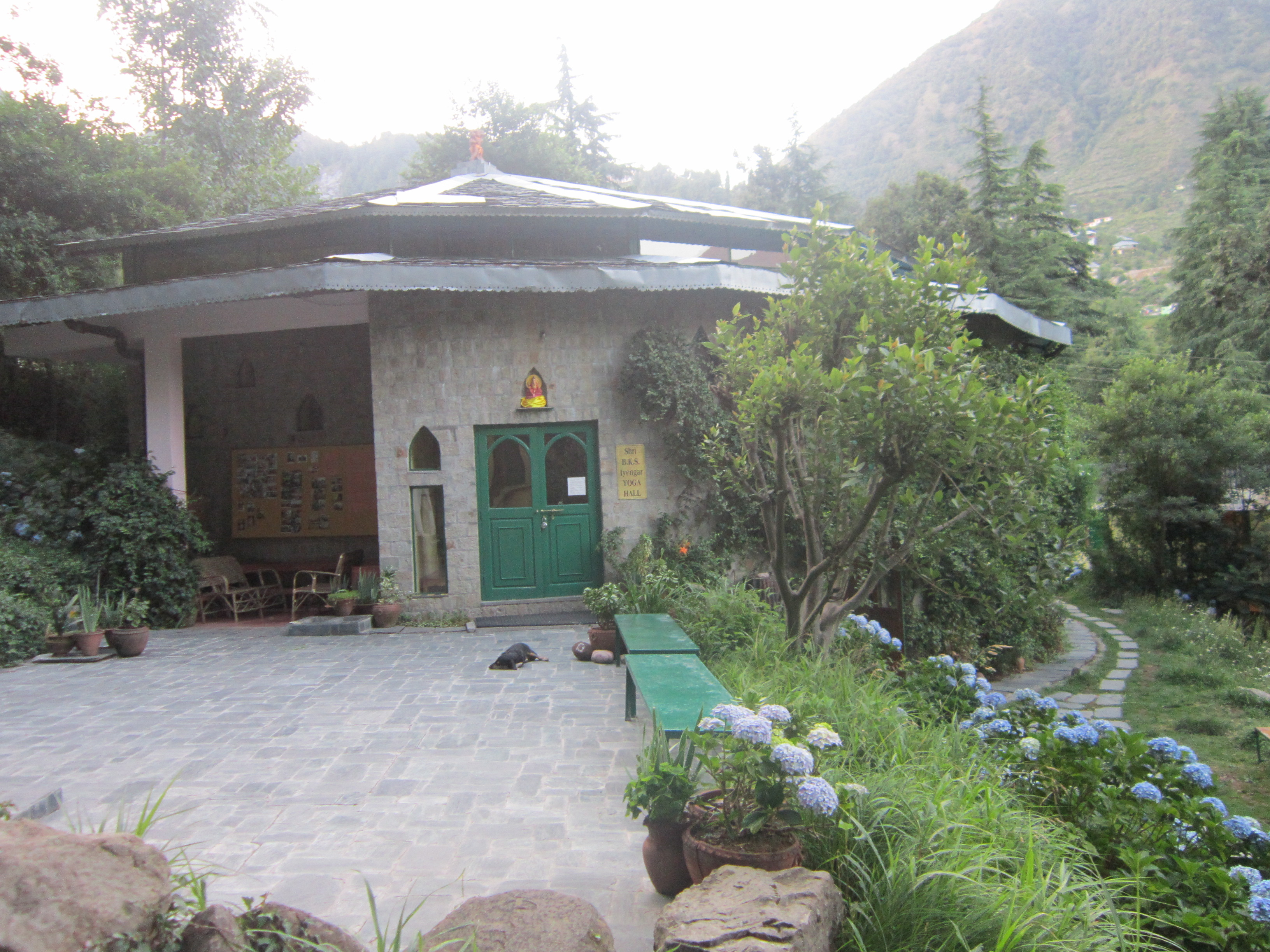 Dharamkot Dharamsala India Iyengar yoga centre